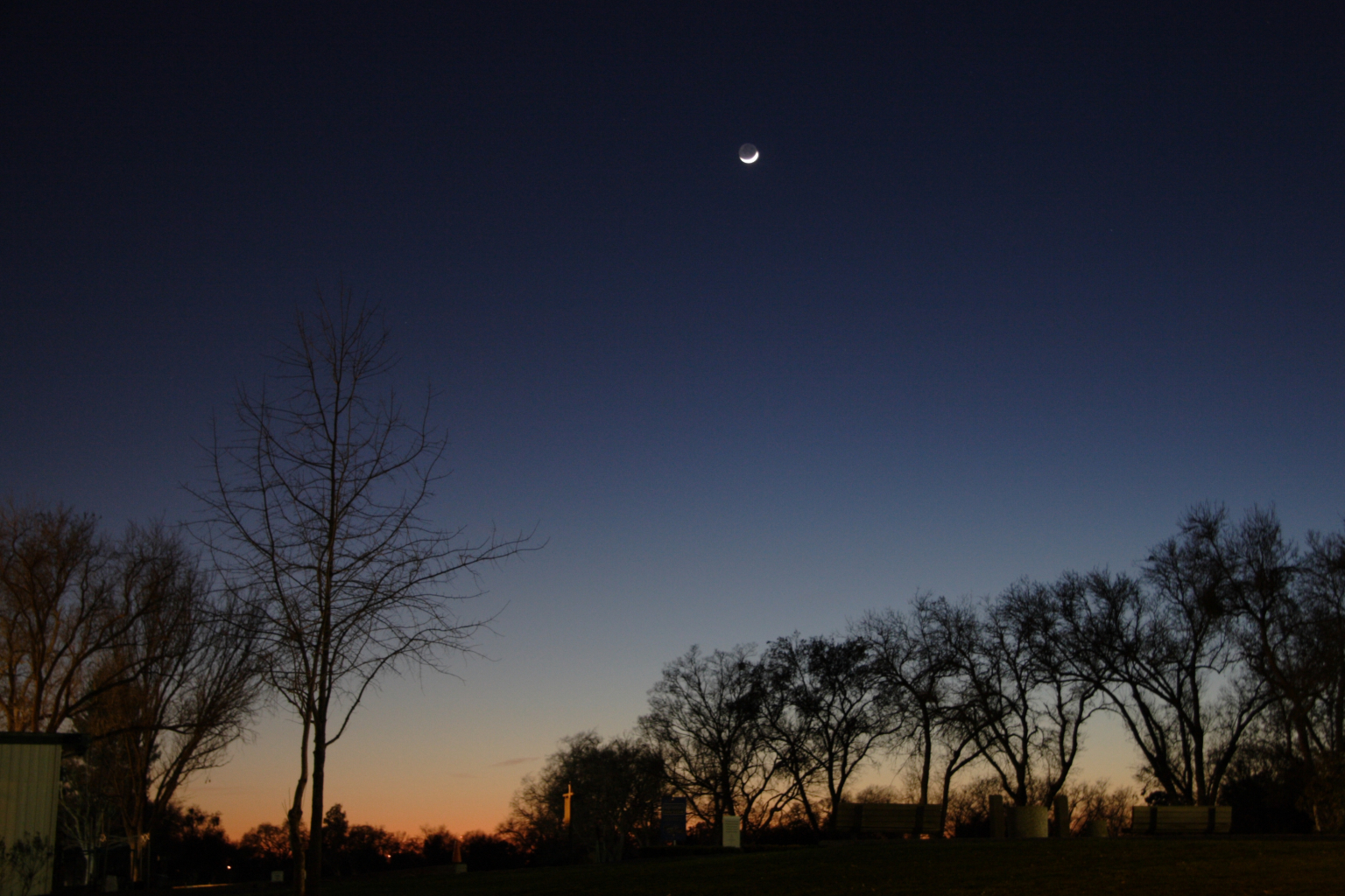 The Evening Moon